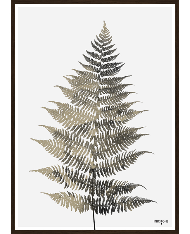 Fern One Poster, Interartdesign.no